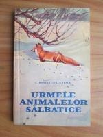 Anticariat: C. Rosetti Balanescu - Urmele animalelor salbatice