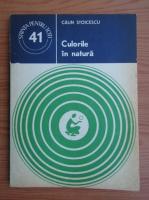 Anticariat: C. Stoicescu - Culorile in natura
