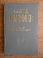 Camille Lemonnier - Sfarsitul familiei Rassenfosse