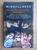 Carla Naumburg - Mindfulness. Pe locuri, fiti gata... respirati!