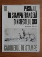 Catalina Macovei - Peisajul in stampa franceza din secolul XIX
