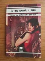 Catherine Cusset - Intre doua iubiri
