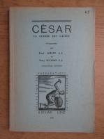 Cesar, la guerre des gaules