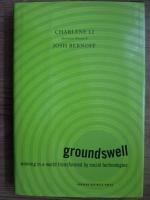 Charlene Li, Josh Bernoff - Groundswell. Winning in a world transformed by social technologies