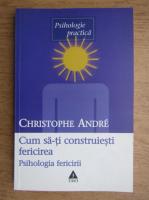 Christophe Andre - Cum sa-ti construiesti fericirea. O psihologie a fericirii
