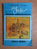 Anticariat: Constantin Closca - Iasi, itinerar cultural-istoric