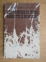 Anticariat: Constantin Crisan - Metamorfoze in inima Harghitei si Bodocului