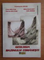 Anticariat: Constantin Grasu - Geologia bazinului Comanesti