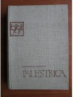 Constantin Kiritescu - Palestrica