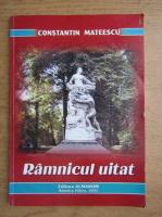 Constantin Mateescu - Ramnicul uitat