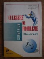 Anticariat: Cornel Stefan, Iaroslav Chebici, Violeta Priciu - Culegere de probleme (clasele 5-6)