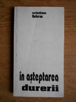 Anticariat: Cristian Biru - In asteptarea durerii