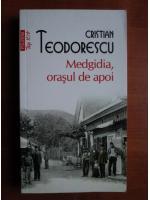 Anticariat: Cristian Teodorescu - Medgidia, orasul de apoi