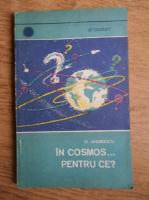 D. Andreescu - In cosmos... pentru ce?
