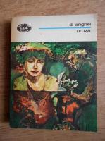 D. Anghel - Proza