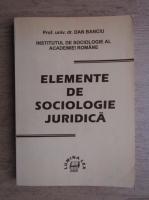 Dan Banciu - Elemente de sociologie juridica