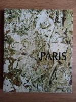Anticariat: Dan Grigorescu - Paris