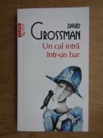 Anticariat: David Grossman - Un cal intra intr-un bar