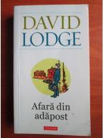 David Lodge - Afara din adapost