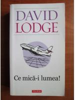 David Lodge - Ce mica-i lumea!