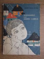 Demostene Botez - Insemnarile lui Andrei Chirica