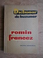 Anticariat: Dictionar de buzunar roman francez