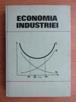 Dinu Mares - Economia industriei