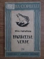 Dinu Moroianu - Brotacelul verde