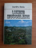 Anticariat: Dumitru Baciu - Lumini muscelene