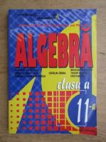 Dumitru Savulescu - Algebra pentru clasa a XI-a