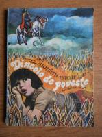 Anticariat: Dumitru Vacariu - Dincolo de poveste (povestiri pentru copii)