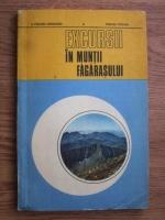E. Puscaru Soroceanu, Dumitru Puscaru - Excursii in Muntii Fagarasului
