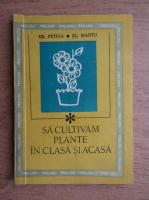 El. Petria - Sa cultivam plante in clasa si acasa