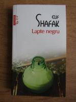 Elif Shafak - Lapte negru