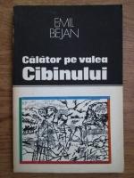 Emil Bejan - Calator pe valea Cibinului