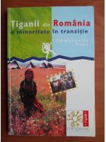 Emmanuelle Pons - Tiganii din Romania, o minoritate in tranzitie