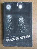 Eugen Teodoru - Microbuzul de seara