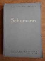 Anticariat: Eugenia Ionescu - Schumann