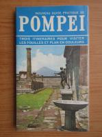 Eugenio Pucci - Pompei (ghid)