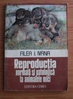 Filea I. Ivana - Reproductia normala si patologica la animalele mici