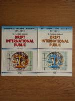 Florian Coman - Drept international public (2 volume)