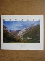 Florin Andreescu - Made in Romania