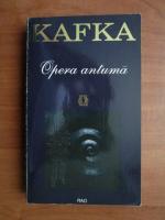 Anticariat: Franz Kafka - Opera antuma