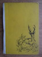 Fratii Grimm - Povesti alese (ilustratii de Ligia Macovei)