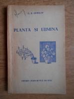 G. B. Ermilov - Planta si lumina