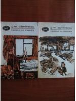 G. M. Zamfirescu - Maidanul cu dragoste (2 volume)