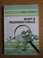 Gabriel I. Nastase - Buget si trezorerie publica
