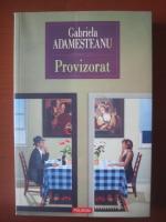 Gabriela Adamesteanu - Provizorat