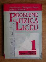 Gabriela Cone - Probleme de fizica pentru liceu (volumul 1)