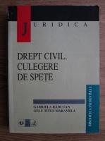 Gabriela Raducan, Gelu Titus Maravela - Drept civil. Culegere de spete
